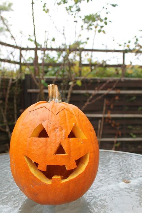 pumpkin-196239_1280