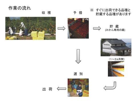 商品提案書 7