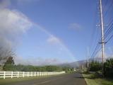 rainbowhp
