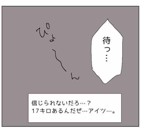 IMG_2093