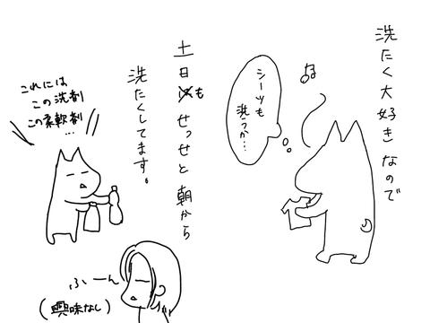 IMG_0242