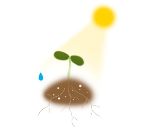 sun-water