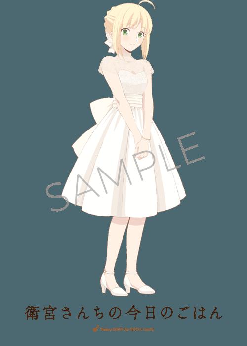 フェイト アニプレックス ドレス (3)