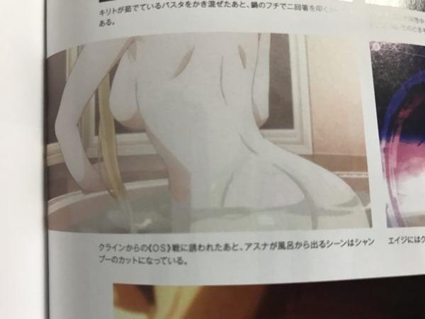 ソードアート・オンライン オーディナル・スケール 乳首 (7)