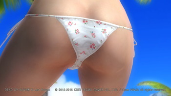 デッドオアアライブ5ラストラウンド パンツ エロ PS4 (84)