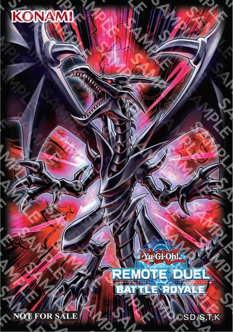 Remote-Duel-Battle-Royale-Red-Eyes-sleeves