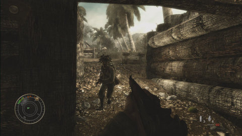 Call of Duty:World at War (6)