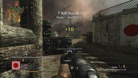 Call of Duty:World at War (3)