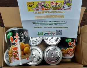 八朔缶詰20200324
