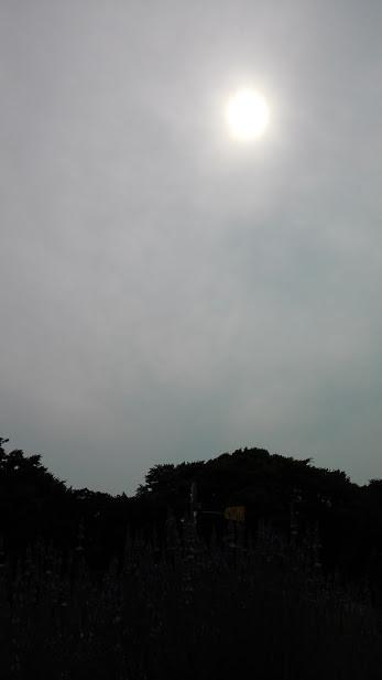 20150622夏至の太陽