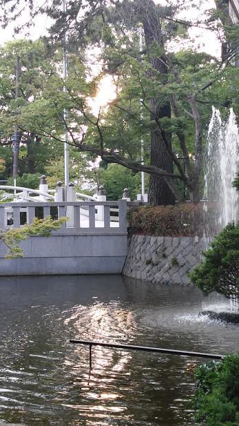 20150622夏至の寒川神社の池に太陽キラキラ