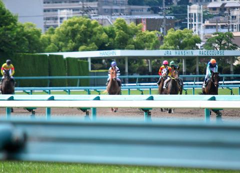 レース後01