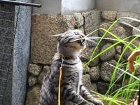 2012_06194月ホームページ画像0019