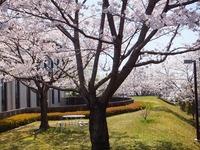 2012_04124月ホームページ画像0004