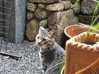 2012_06194月ホームページ画像0018
