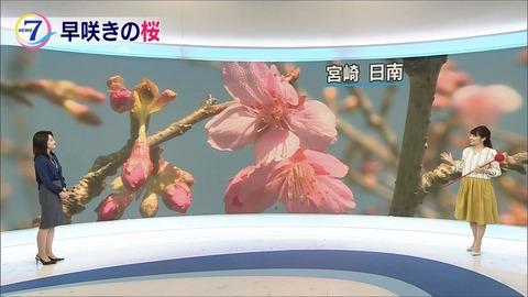 kikuchi18011801
