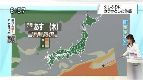 katayama20052708