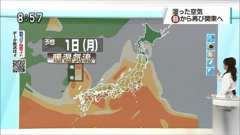 katayama20052711