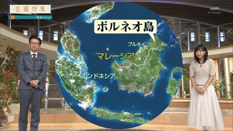takeuchi19092712