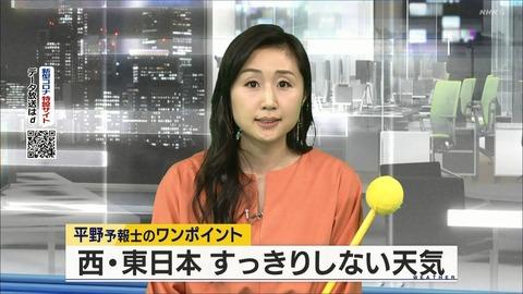hirano20033013