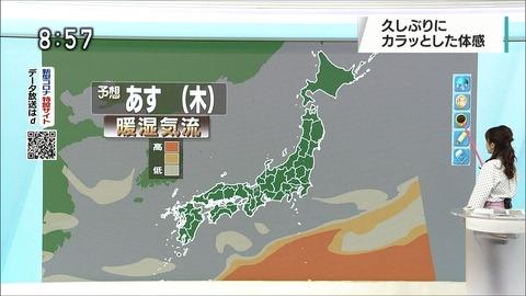 katayama20052709