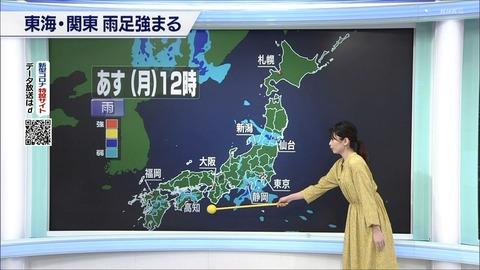 nakamura20053106