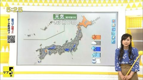 hirano20060112