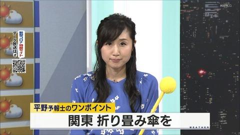 hirano20060111