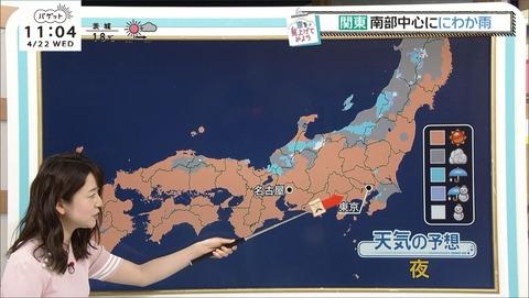 miyazaki20042202