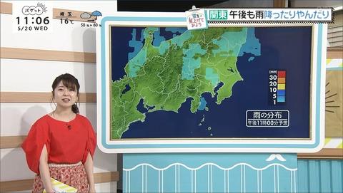 miyazaki20052003