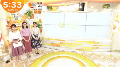 minagawa20032352