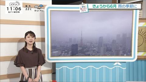 miyazaki20060101