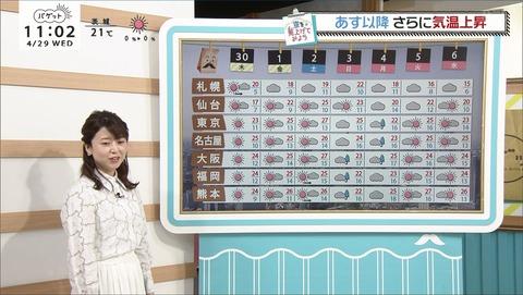 miyazaki20042902