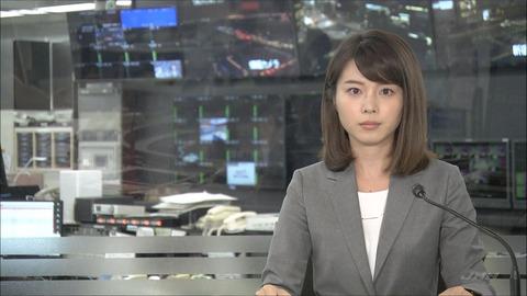 皆川玲奈 JNNニュース 18/06/27