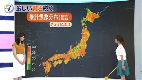 kikuchi17071503