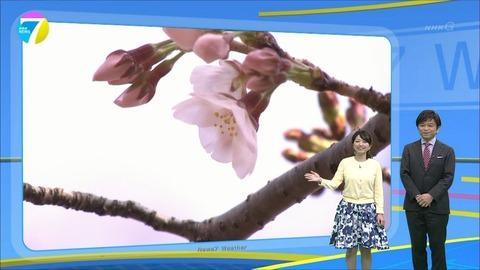 fukuoka17033002