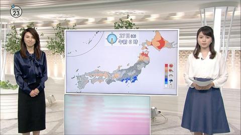 minagawa17042632