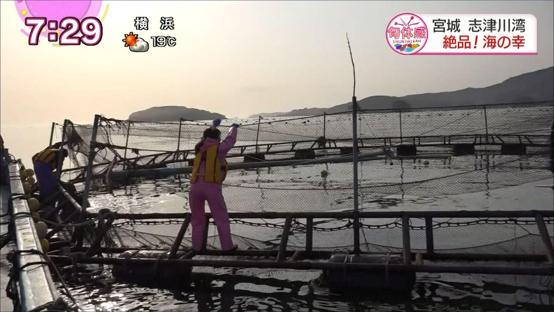 【2012年入局】千葉美乃梨アナ Part3【まちかど情報室】 YouTube動画>10本 ->画像>279枚