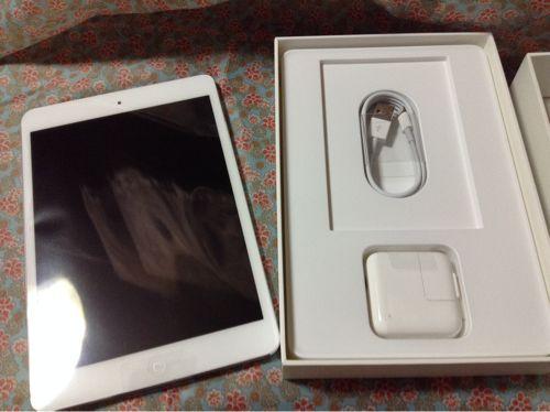 iPad mini画像1