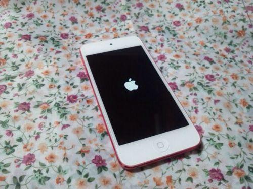 iPodtoutch2