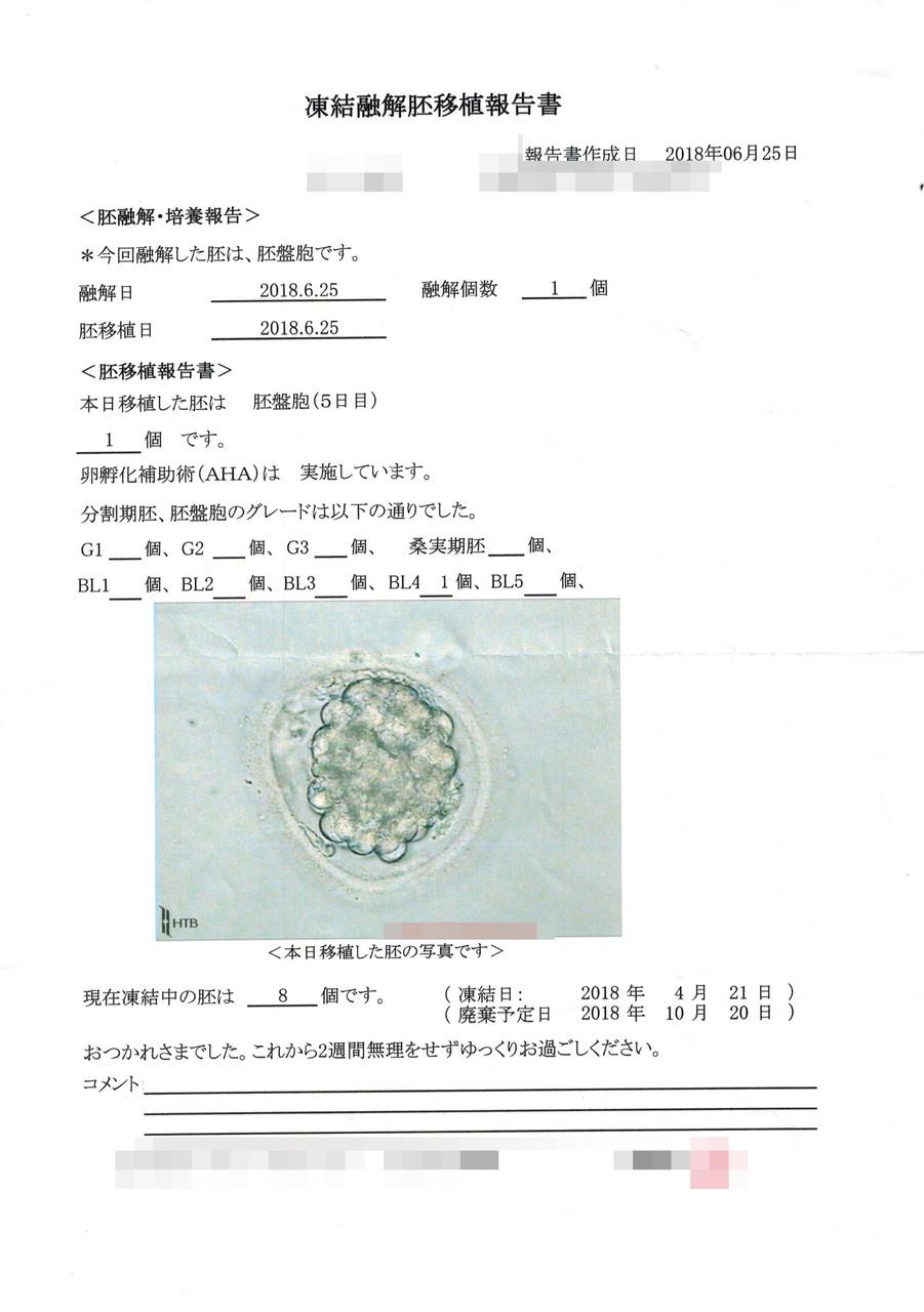 胚盤胞 予定日