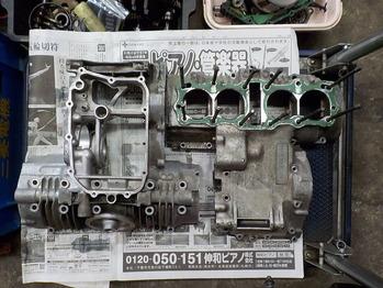 DSCN6506