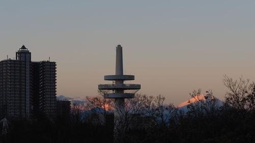 2016-12-11 所沢航空記念公園 TOMY PC110231