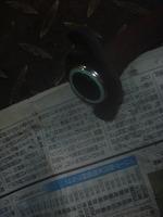 P1180570