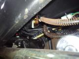 buggy-china20120913ws (2)