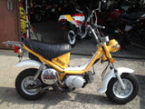 z-chappy50ws20120308 (1)