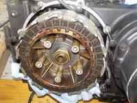 DSCN5941