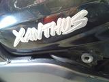 xanthus-zr400dws20121122 (1)
