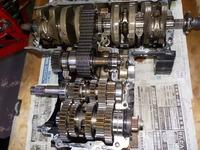 DSCN9495