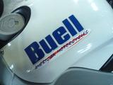 buell-xb9r20120307ws (1)